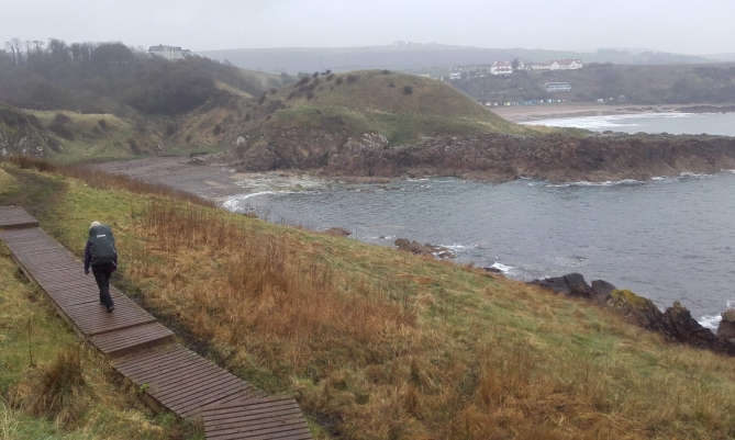 Wild_Camp_1_Coldingham_Eyemouth_10
