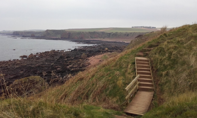 Wild_Camp_1_Coldingham_Eyemouth_4
