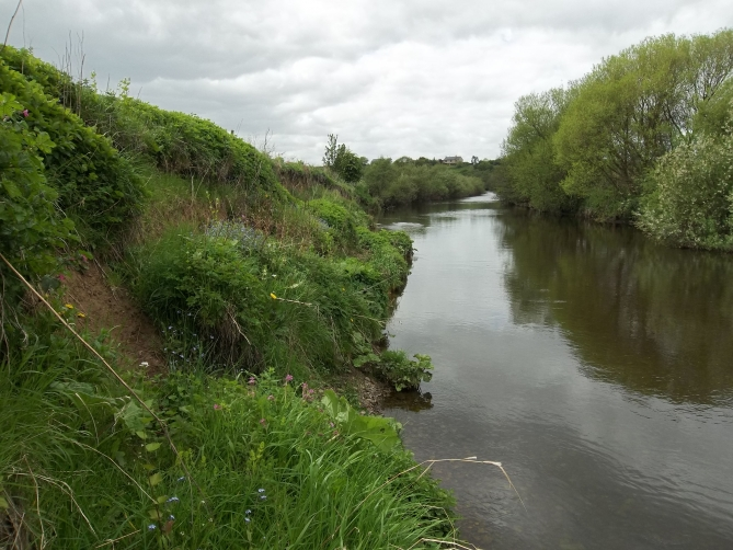 Acklington_River