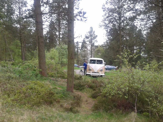 Campervan in Forest Front