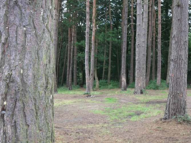 Wild_Camping_North_East_8