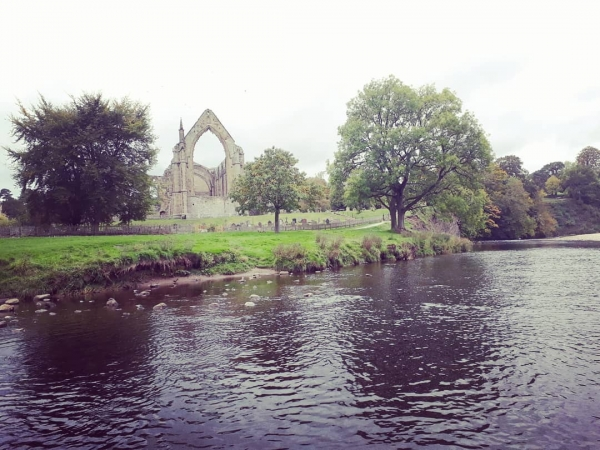 Looking over at Bolton Priory Ruins from a stepping stone on the river