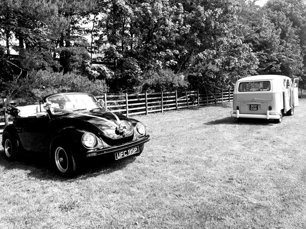 Beetle and Camper in the field within the Parlour at Blagdon